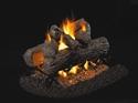Picture of Golden Oak See Thru Vented Log Set