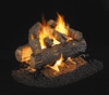 Picture for category See-Through Vented Gas Logs